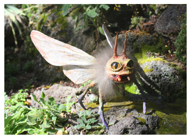 Neu! Postkarten zu Insekten aus Papier-/Clothmache