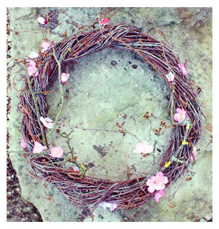 Kirschblütenkranz